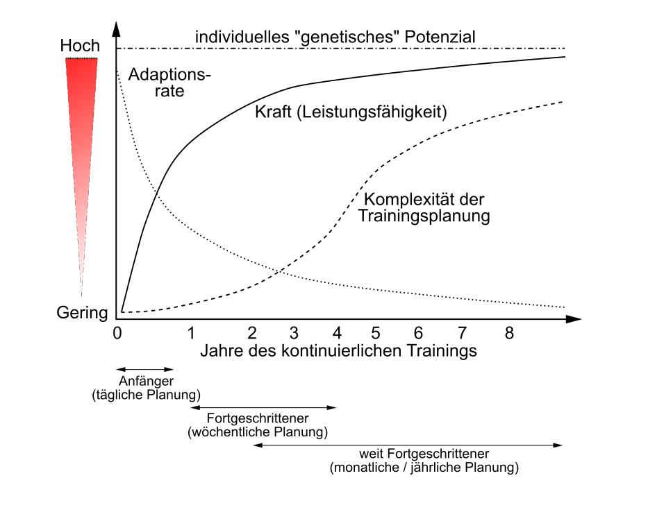 prinzip-general-adaption-syndrome-muskelaufbau