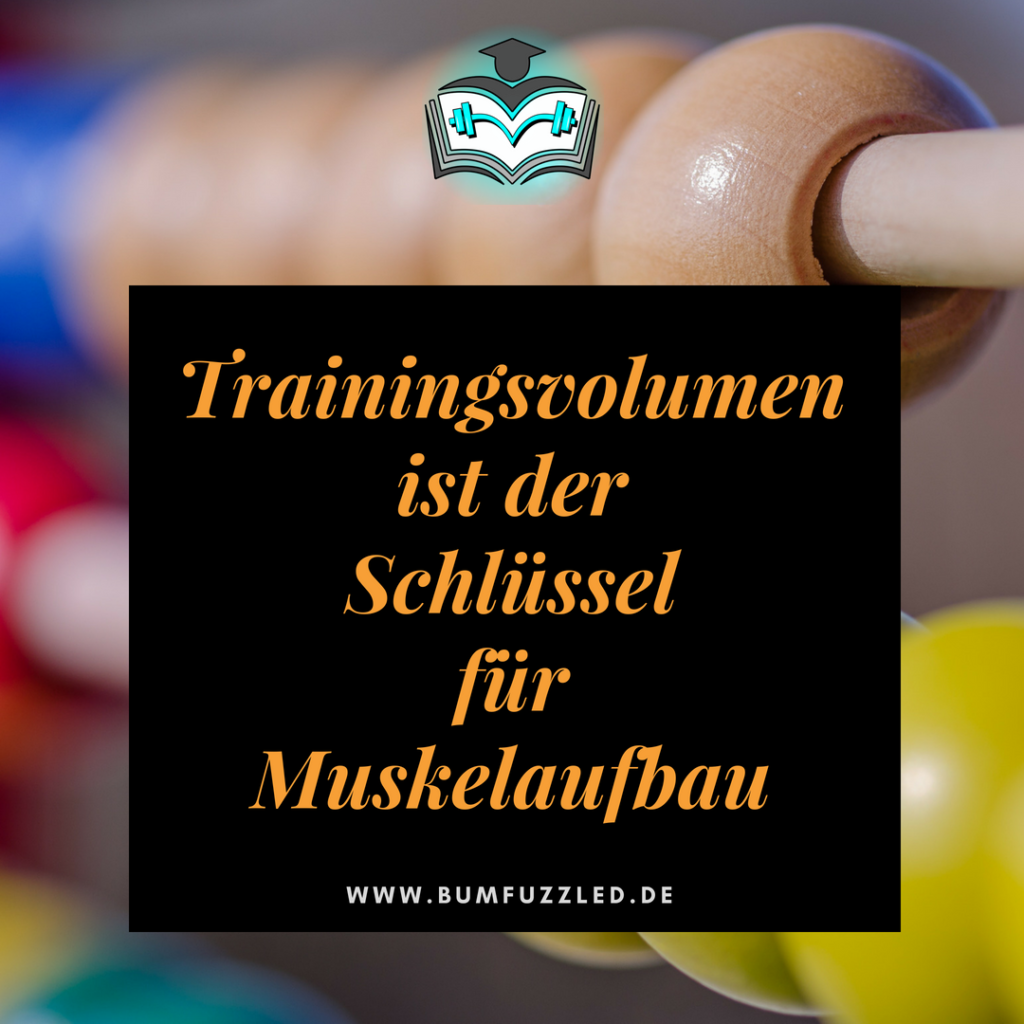 trainingsvolumen-muskelaufbau